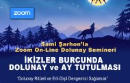 Zoom On-Line Dolunay Semineri -30.11.2020
